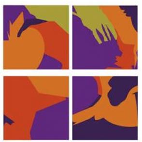 """Parution """"Les attaques du corps à l'adolescence""""<br /> Approche psychanalytique en clinique projective, Ed. Dunod"""